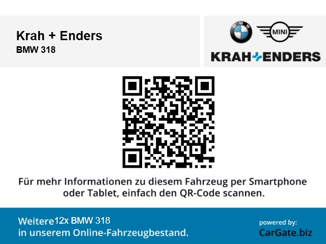 BMW 318 318: Bild 17