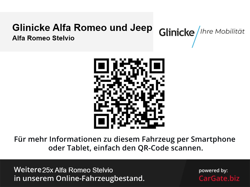 Alfa Romeo Stelvio Super Q4 2.0 Turbo 16V EU6d-TApplecarplay