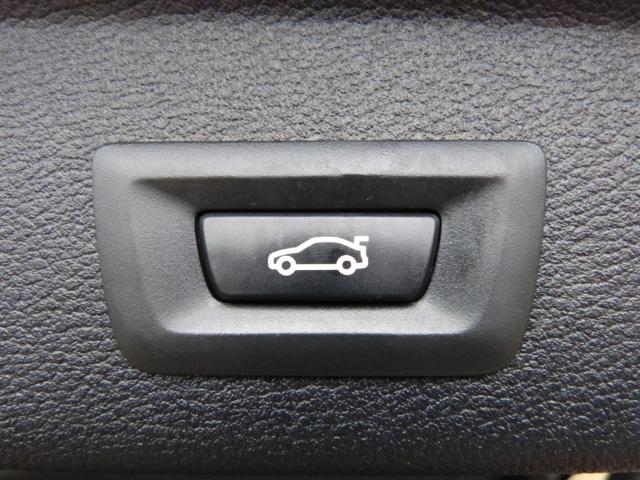 {{dvm.vehicle.Make.Name}}