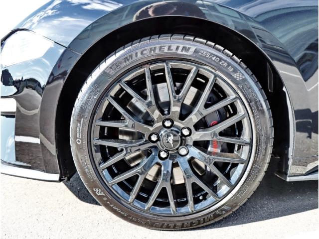 Ford Mustang Mustang